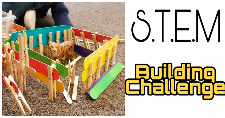 STEM for Kids – Animal Cages