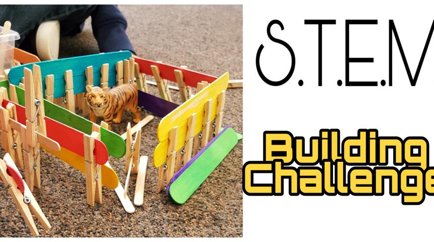 STEM for Kids – Animal Cages