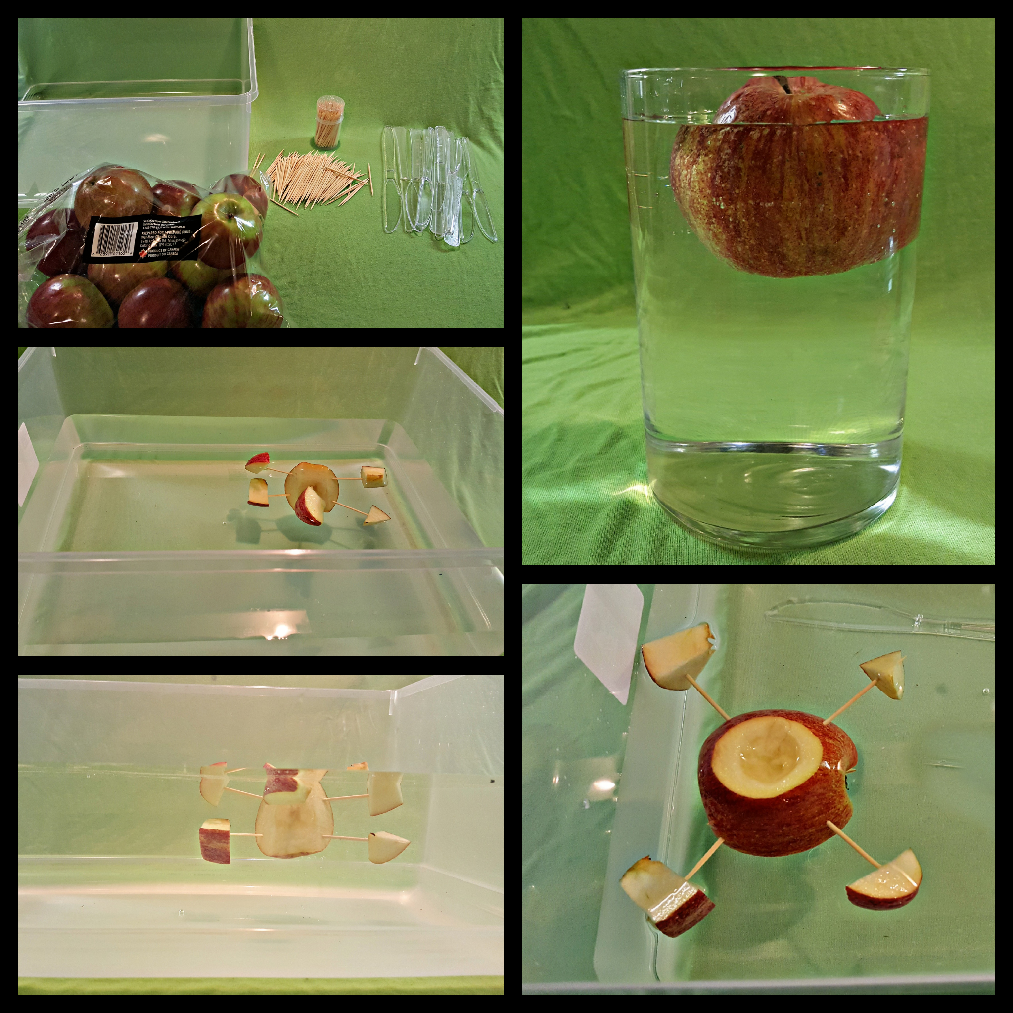 Science Experiments for Kids – Apple Boats