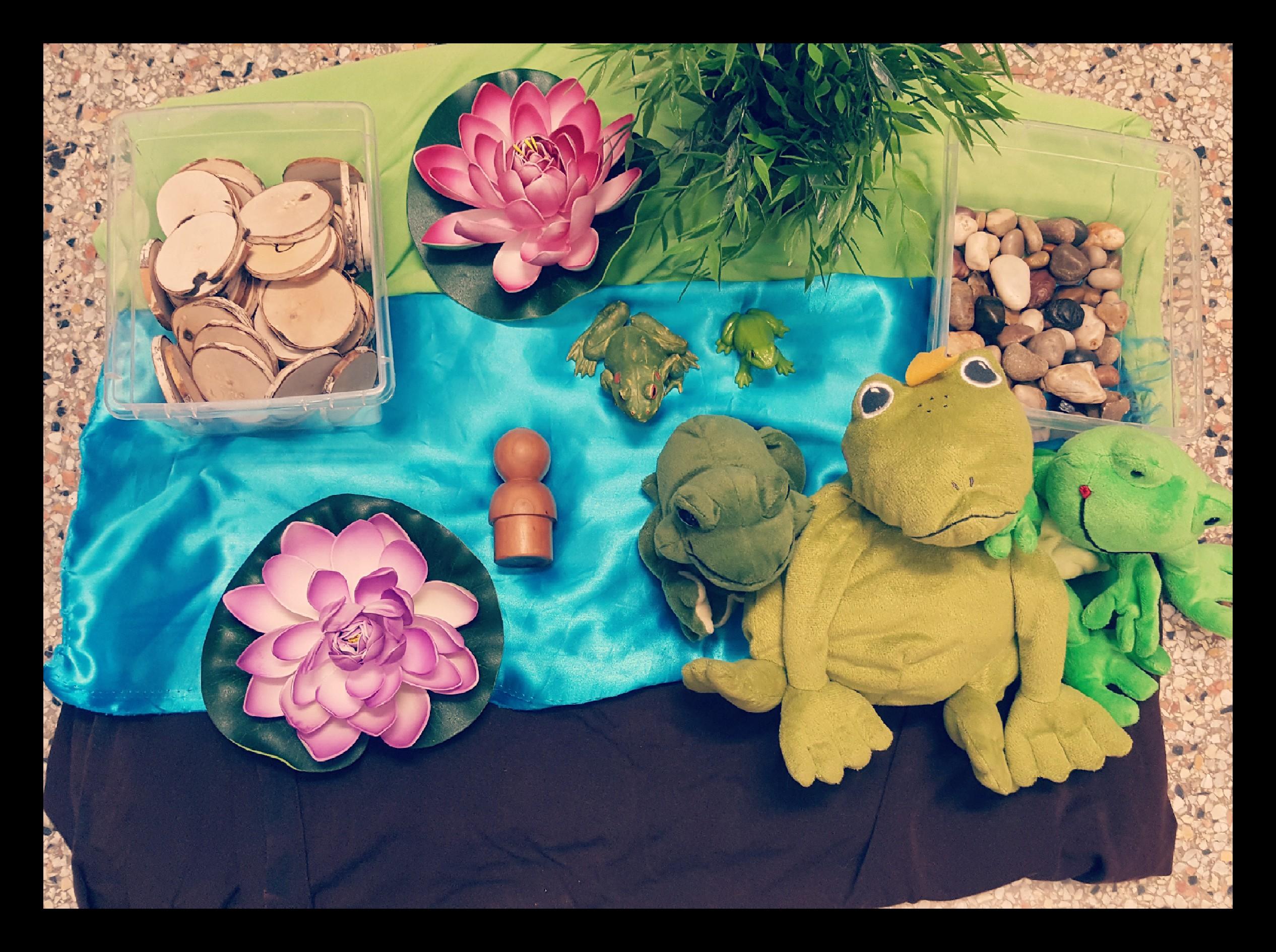 Frog Habitat Story Play Centre