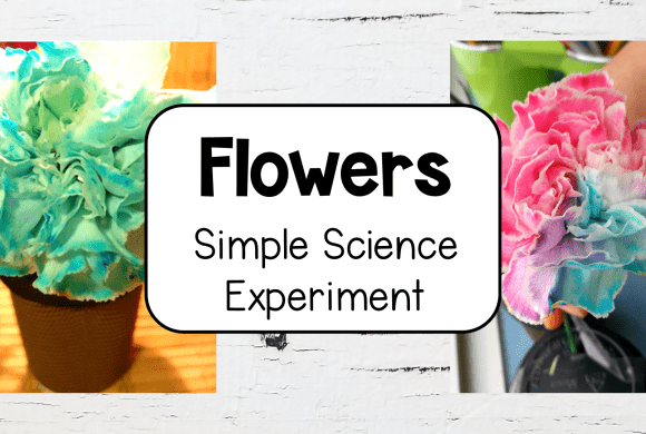 Simple Science Experiments