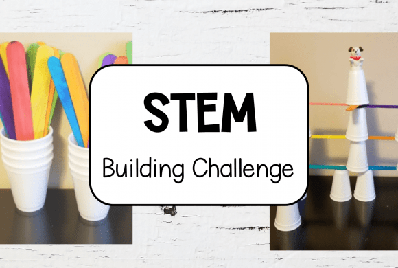 STEM Challenge that Kids will Love