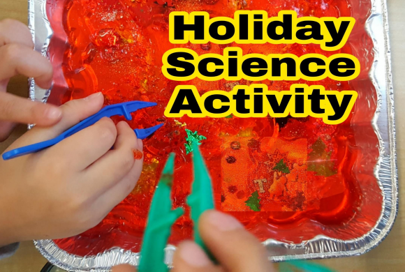 Holiday Science Experiment