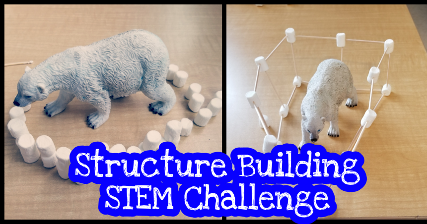 Stem For Kids – Structure Challenge