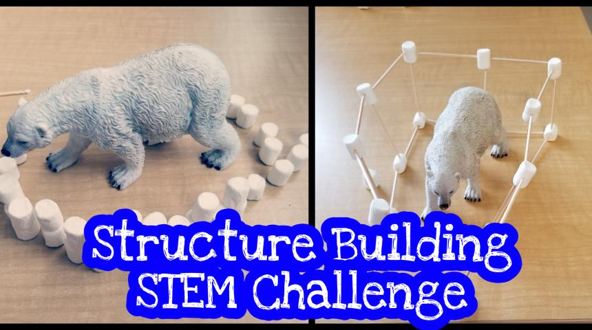 Stem For Kids – Structure Challenge