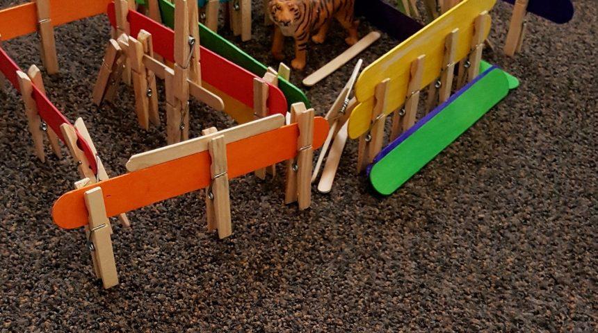 STEM Challenge – Animal Cages
