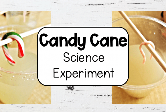 Easy Science Projects with Candy Canes