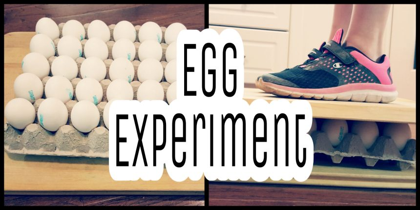 Science Experiment for Kids – Egg Inquiry