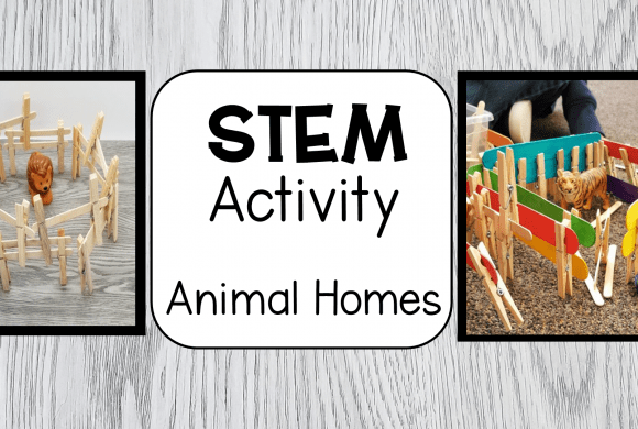 STEM for Kids at Home or School