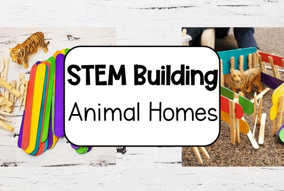 Animal STEM for Kids in Kindergarten and Primary