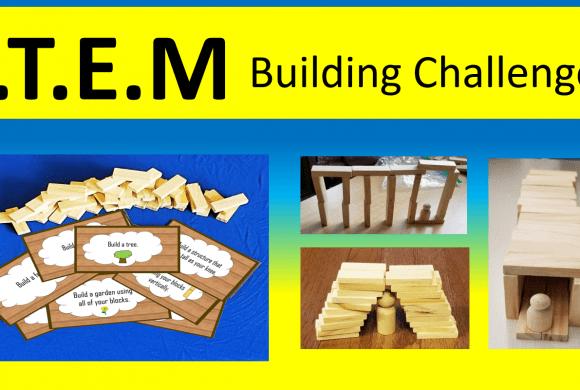 STEM Challenge