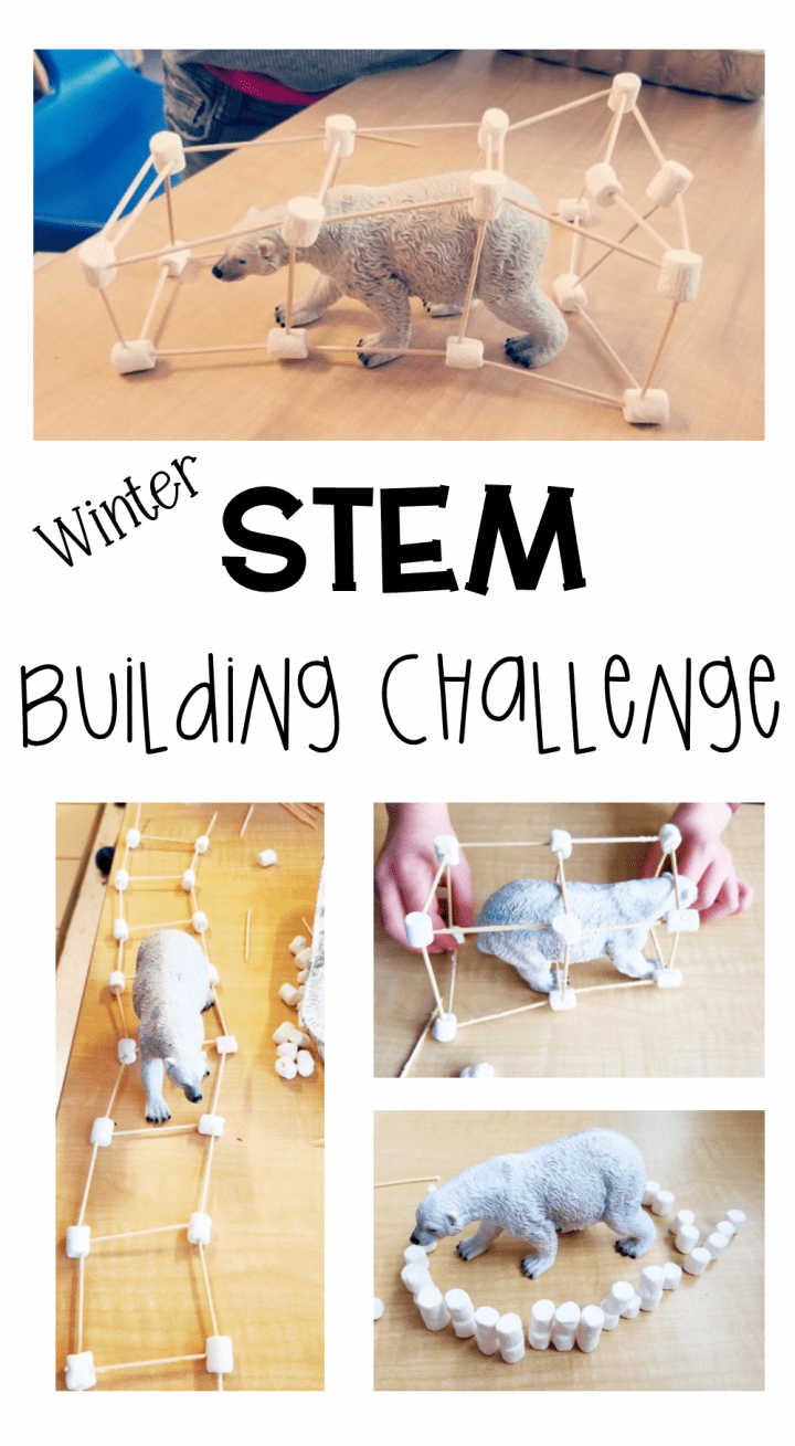 Stem For Kids Structure Challenge Hands On Teaching Ideas